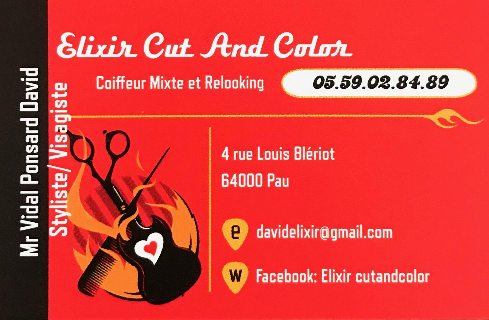 Elixir Cut and Color - Pau
